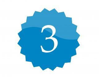 3 badge