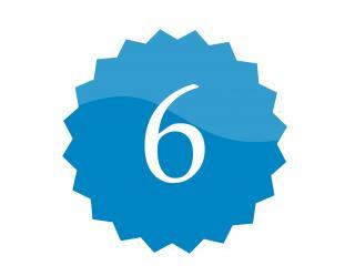 6 badge