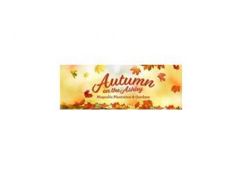 autumn on ashley