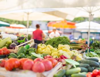 Browse the Charleston farmers market