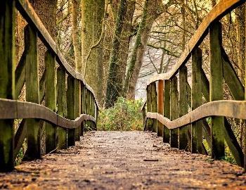 hiking bridge